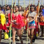 Zulu reed dance
